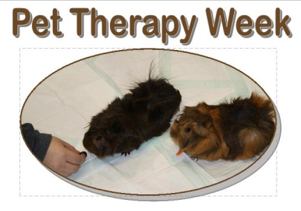Pet Therapy Week